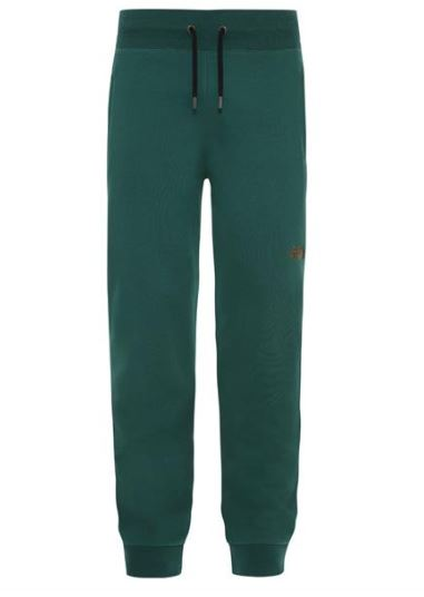 Groene heren Jogger The North Face NSE Pant - NFOOCG25N3P1